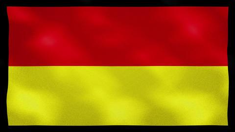 Tamil Eelam dense flag fabric wavers, background loop Animation