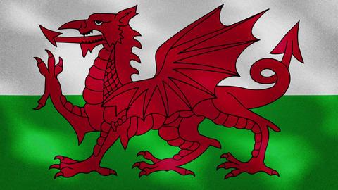 Wales dense flag fabric wavers, background loop Animation