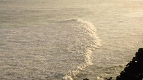 4k-24p. White big wave ライブ動画