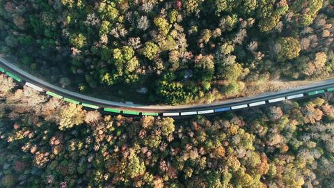 A Railroad Cutting A Thick Forest ライブ動画