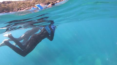 Diving into the Whitsunday Islands Sea, Australia GIF