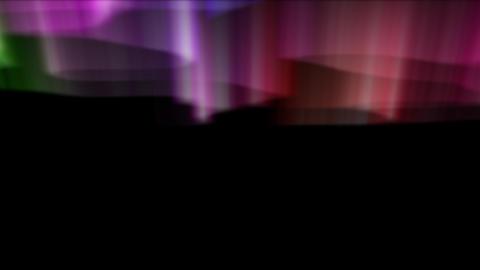08065 Videos animados