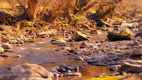 small river with stones in sunlight Live Action