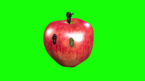 843 4K Nature FOOD CONCEPT 3D computer generated leaches eat apple Animation