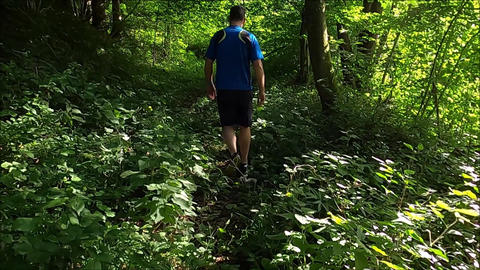 A man Trekking a Forest With His Dog GIF