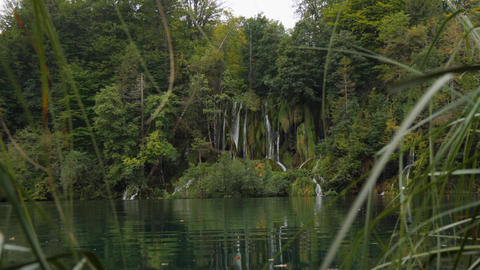 View throug grass on waterfall stream. Plitvice Lake among green forest, Croatia GIF