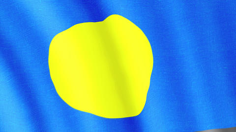 Palau. State flag of the country Animation
