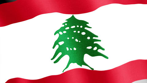 Lebanon. State flag of the country Videos animados
