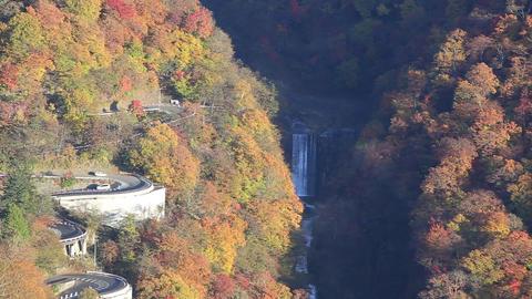 Japanese tourist attractions, Iroha zaka in autumn Footage