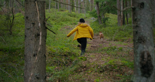 Young woman run on trail forest path with her dog Live Action