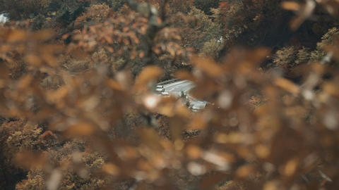 cars on mountain road in beautiful autumn mountain and trees with yellow and orange leaves Live Action
