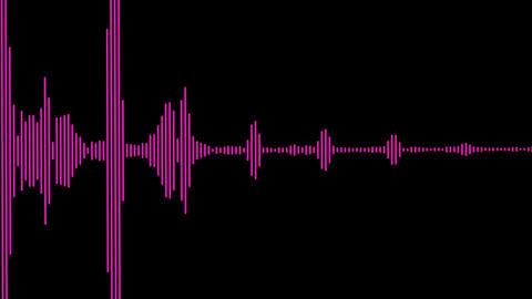 Sound Wave Spectrum Animation