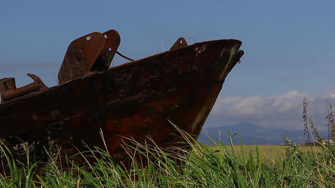 Rust boat with grass Live Action