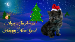 Happy New Year and Merry Christmas greeting card with text Footage