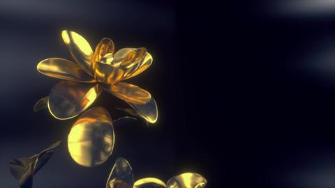 Infinite Golden Bloom Animation