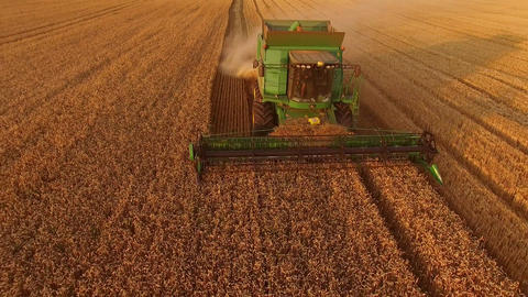Field and combine agriculture and technology Live Action