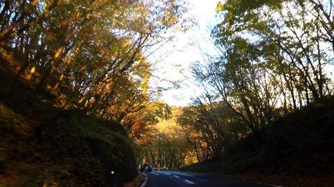 Nikko Iroha Saka front view car image Footage