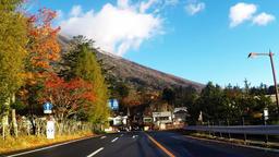 Tourist spots in Japan. NIKKO ライブ動画