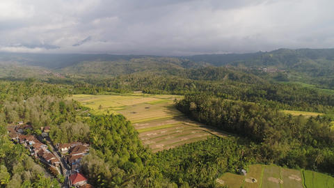tropical landscape with agricultural land in indonesia Live Action