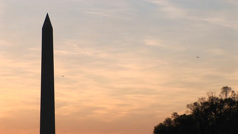 Upward pan of the Washington Monument, silhouetted... Stock Video Footage