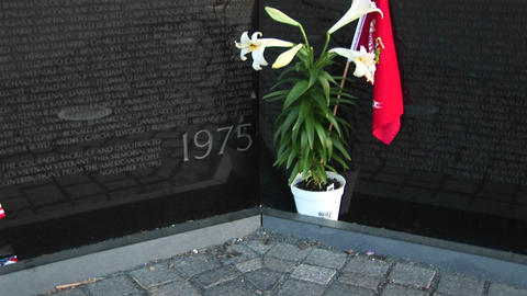 A pot of white lilies holding a red flag stands at the... Stock Video Footage