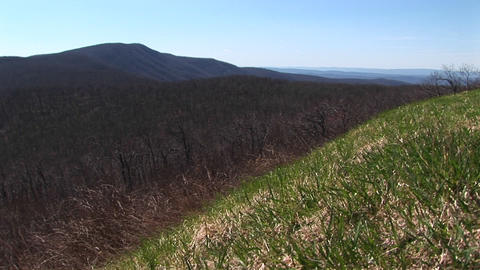 Pan left from a stone wall along the Blue Ridge Highway... Stock Video Footage