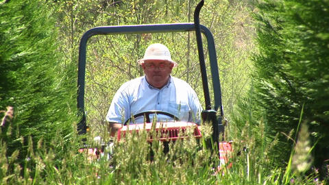 A senior drives a lawn-mower through some tall grass Stock Video Footage