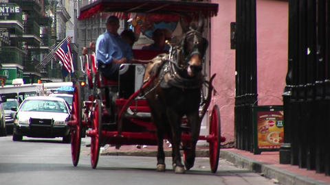 A mule-drawn buggy makes its way down a crowded street in New Orleans Footage