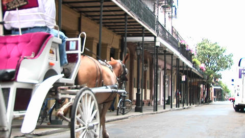 A horse drawn carriage makes its way past the camera and down a street in New Orleans Footage