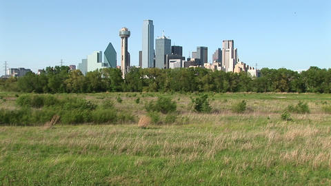 The skyscrapers rise high above the city of Dallas, Texas Stock Video Footage