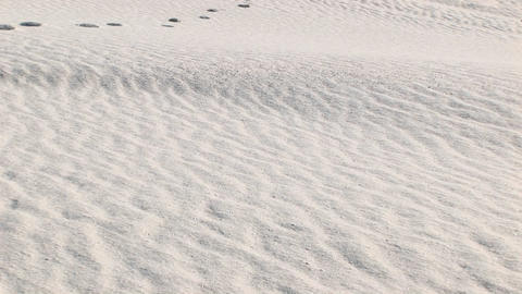 Pan-up of tracks in a sand dune at White Sands National... Stock Video Footage
