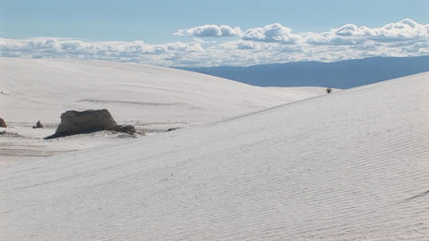 Pan-right of sand dunes and a scraggly plant at White... Stock Video Footage