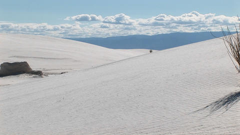 Pan-right of sand dunes and a scraggly plant at White Sands National Monument in New Mexico Footage