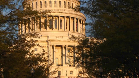 Pan up shot of the United States Capitol building in Washington DC Footage