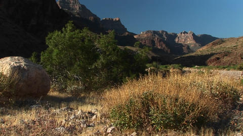 Pan-right shot of Grand Canyon National Park in Arizona Footage