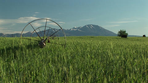 Medium shot of irrigation sprinklers on Utah farm land in front of the La Sal Mountains Footage