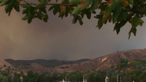 Pan-left shot of smoke billowing from a wild fire raging... Stock Video Footage