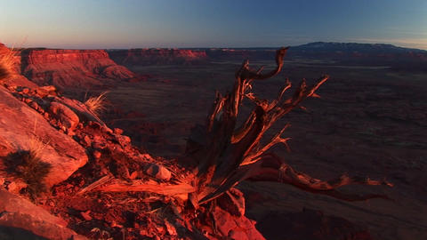 Medium-shot of Canyonlands National Park at sunset with the La Sal Mountains in the distance Footage
