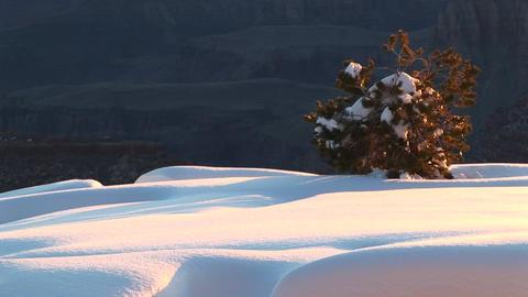 Medium shot of sun hitting undisturbed snowdrifts and... Stock Video Footage