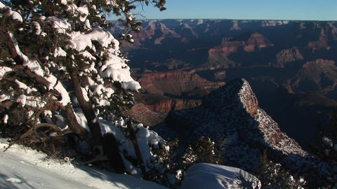 Wide background of Grand Canyon National Park with winter snow covered trees and rocks in foreground Footage