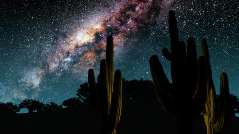 cactuses and Milky Way stars at night. Elements of this image furnished by NASA Animation
