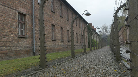 Electric Fences at Auschwitz Camp Footage