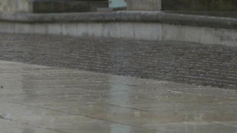 Raining Drops on Pavement Footage
