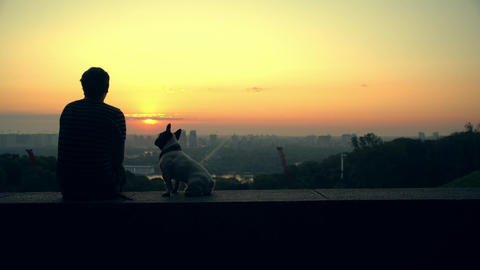Man with his dog watching the sunset on the horizon Live Action