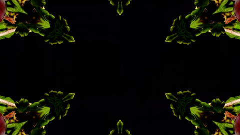 Kaleidoscope fruit vegetable 4k348 Footage