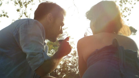 young couple makes a toast in the park and drink red wine Footage