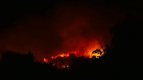 A bushfire burning orange and red at night Footage