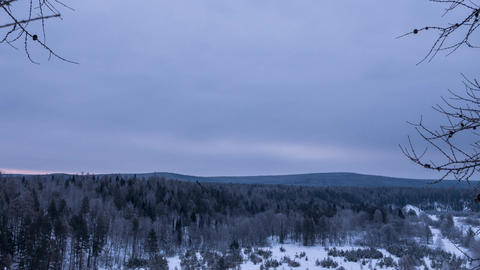 Morning over the winter forest. Time Lapse Footage