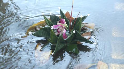 Thailand Krathong Floating On Water Footage