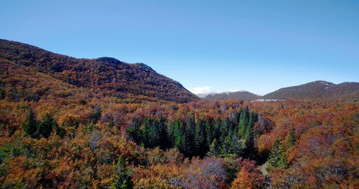 Aerial, Beautiful Autumn Colors In Velebit, Croatia - Graded and stabilized vers Footage